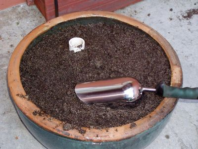 Pot full of soil